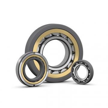 50 mm x 100 mm x 25 mm  Fersa F19046 cylindrical roller bearings
